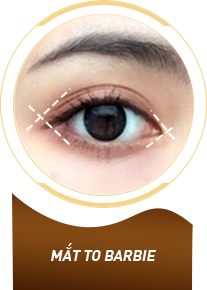 Mắt to tròn Barbie Eyes