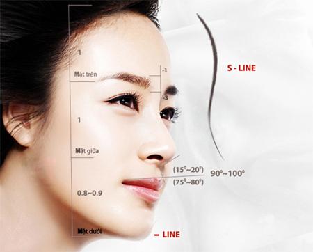 Dáng mũi có hình chữ S nối dài từ gốc đến đầu mũi