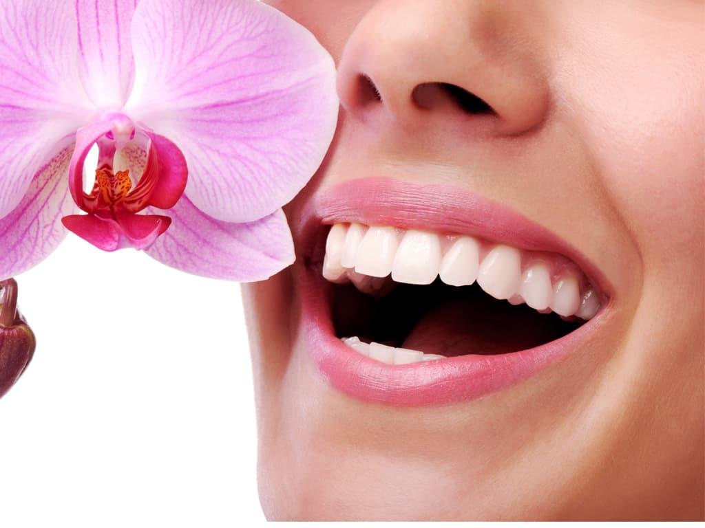 Tổng hợp những dòng răng sứ đang phổ biến hiện nay